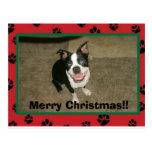 ¡tobyxmascard, Felices Navidad!! Postal
