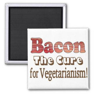Tocino vegetariano imán cuadrado