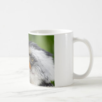 Tockus leucomelas mug