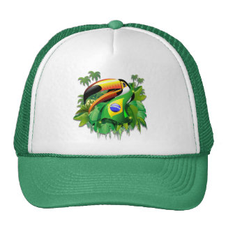 Toco Toucan con los gorras de la bandera del Brasi