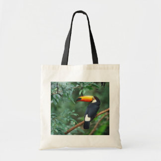 TOCO TOUCAN PHOTO FULL COLOR BUDGET TOTE BAG