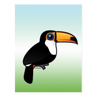 Toco Toucan Postcard