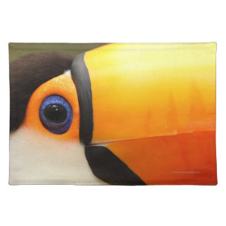 Toco Toucan (Ramphastos toco) is the largest Placemat