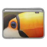 Toco Toucan (toco de Ramphastos) es el más grande Funda Macbook Air