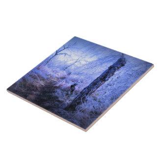 Tocón de árbol por el rastro azulejo ceramica