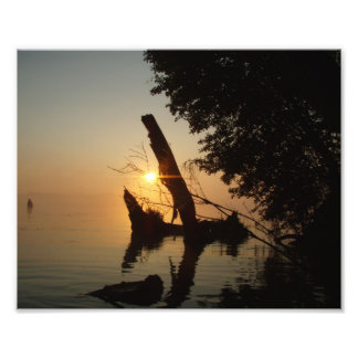 Tocón en la salida del sol fotografias