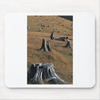 Tocones de árbol viejos en tierras de labrantío alfombrilla de ratones