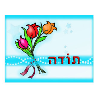 Toda תודה Hebrew Thank You Greeting Card Postcard
