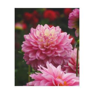 Toda la flor rosada de Dalia Lona Estirada Galerias