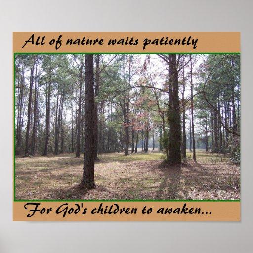 Toda la naturaleza espera el poster