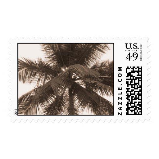 Toda la palma timbres postales