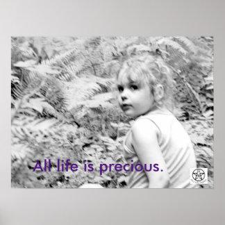 Toda la vida es preciosa póster