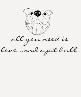 Toda lo que usted necesita es amor y una camisa de