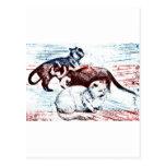Todas las ilustraciones americanas del ejemplo de  tarjetas postales