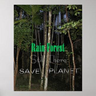 Todavía selva tropical allí póster