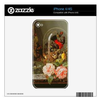 Todavía vida con el pájaro del tarareo en una bóve calcomanías para iPhone 4S