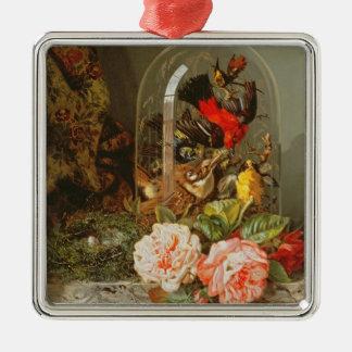 Todavía vida con el pájaro del tarareo en una bóve ornamento para reyes magos