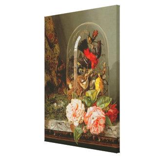 Todavía vida con el pájaro del tarareo en una bóve impresiones de lienzo