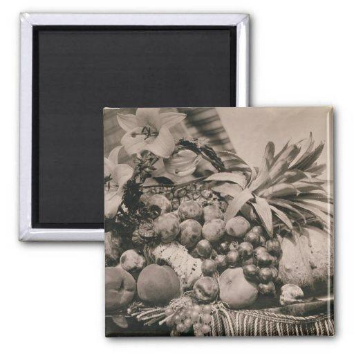 Todavía vida con la fruta, 1860 (foto de la sepia) iman de frigorífico