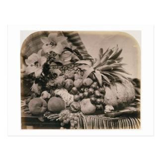 Todavía vida con la fruta, 1860 (foto de la sepia) tarjetas postales