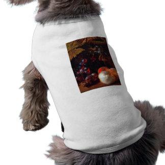 Todavía vida con las frutas de Nicolás de Largilli Camisetas De Perro
