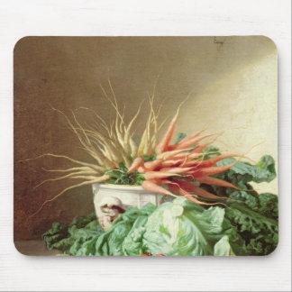 Todavía vida de fresas, de zanahorias y de la col alfombrillas de ratón