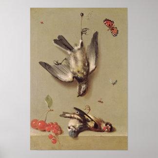 Todavía vida de los pájaros y de las cerezas muert póster