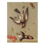 Todavía vida de los pájaros y de las cerezas postal