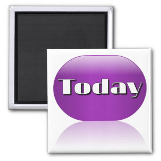Today Adaptive Living Tool Color Visual Identifier Magnet