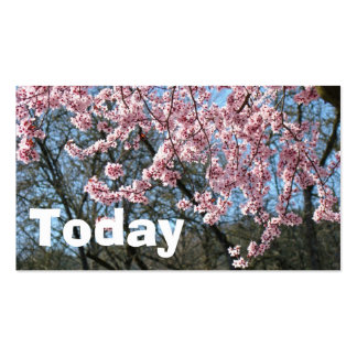 Today Business Cards Spring Trees Flowering