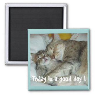 Today is a good day ! Cats Magnet