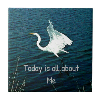 """""""Today Is All About Me"""" Funny Quote Ceramic Tile"""