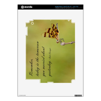 Today is the Tomorrow Dragonfly iPad Skin
