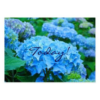Today! Love One Another! Blue Hydrangea Flowers Large Business Cards (Pack Of 100)