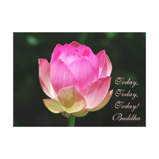 Today today today by Buddha Gallery Wrapped Canvas