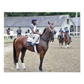 Todd Pletcher Filly Photograph