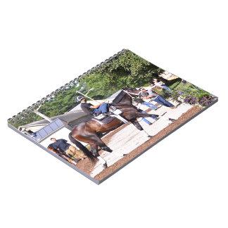 Todd Pletcher Stables Notebook