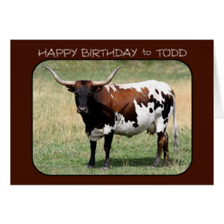 Todd Texas Longhorn Cow Happy Birthday Card
