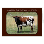 Todd Texas Longhorn Cow Happy Birthday Cards