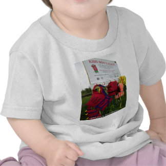 Toddler T / Kids Don't Float Tshirts