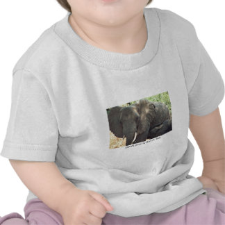 Toddler T / Mother Elephant and Baby T-shirts
