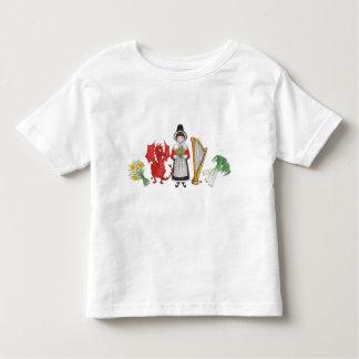 Toddler T-shirt: Welsh Daffodils Dragon Leeks Harp T-shirt