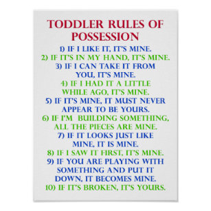 Toddleru0027s Rules Of Possession Funny Poster Sign