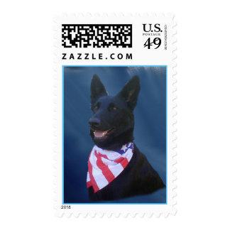 Todo el franqueo americano del perro