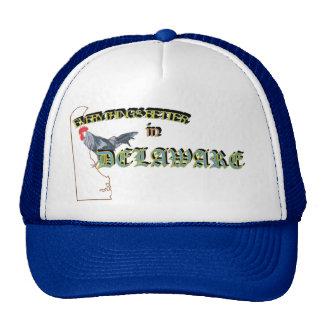 Todo es mejor en el casquillo de Delaware Gorros