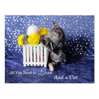 Todo lo que usted necesita es amor - y un gato - postales