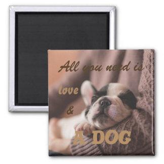 Todo lo que usted necesita es amor y un perro imán cuadrado
