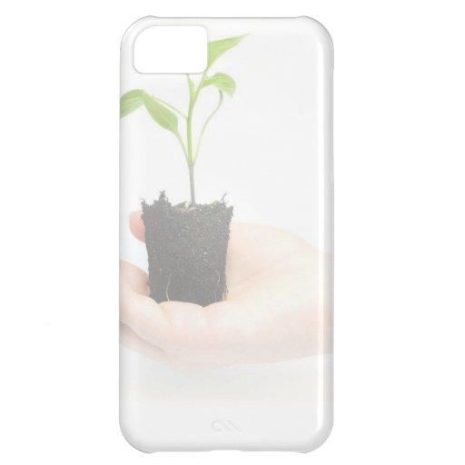 Todo orgánico funda para iPhone 5C