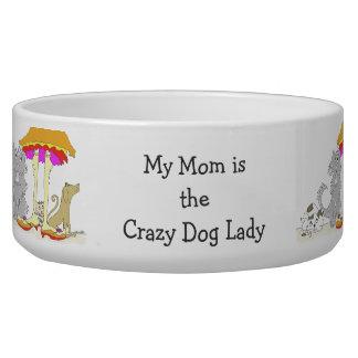 Todo procede a la señora loca del perro de la comedero para mascota