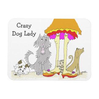 Todo procede a la señora loca del perro de la iman rectangular